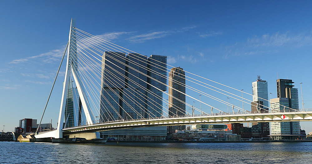 Erasmus Bridge and skyline, Rotterdam, Netherlands - 800-3654