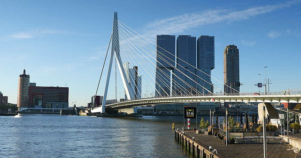 Erasmus Bridge and skyline, Rotterdam, Netherlands - 800-3655