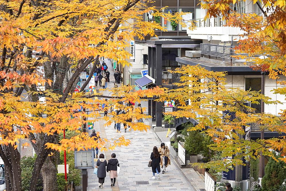 People walking along Omotesando Street, Harajuku, Tokyo, Japan