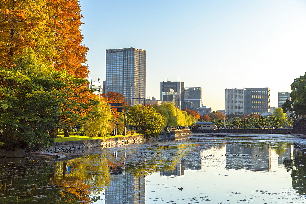 Skyscrapers of Marunouchi and moat of Imperial Palace, Tokyo, Honshu, Japan, Asia