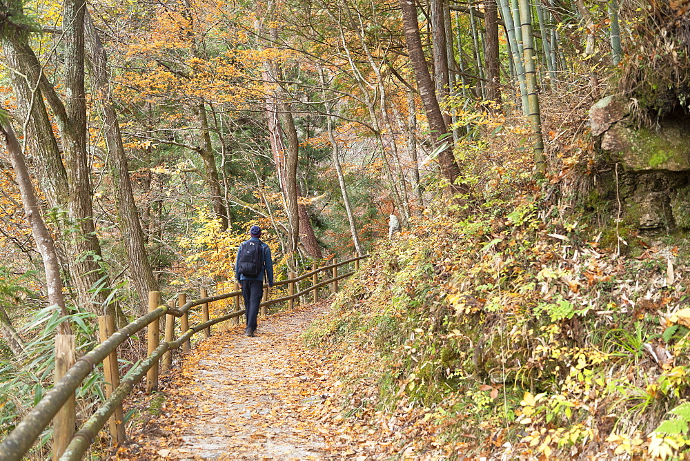 Man hiking forest on Nakasendo Way, Tsumago, Gifu Prefecture, Honshu, Japan, Asia