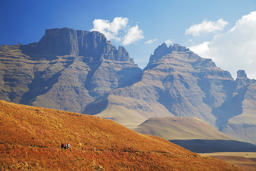 People hiking in Monk's Cowl Nature Reserve with Champagne Castle in background, Ukhahlamba-Drakensberg Park, UNESCO World Heritage Site, KwaZulu-Natal, South Africa, Africa - 800-391