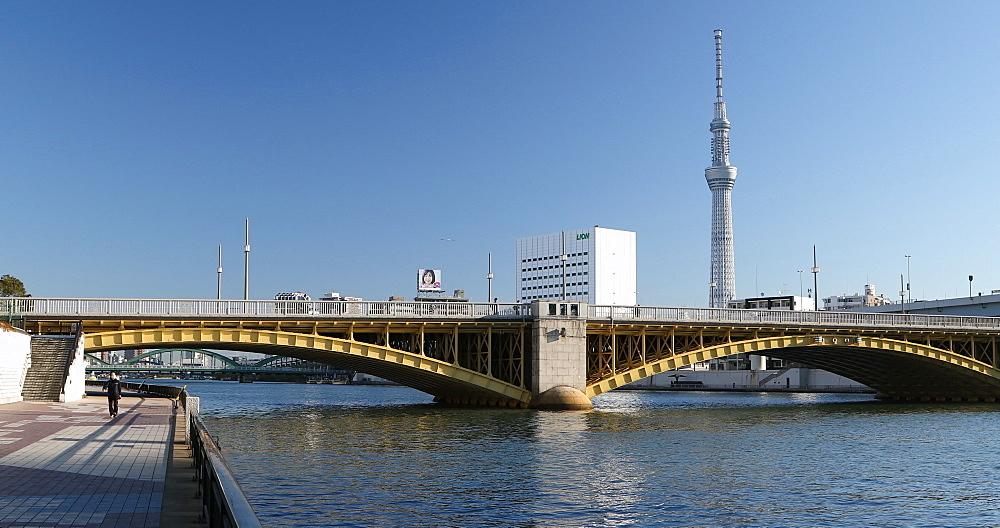Skytree tower and Sumida River, Tokyo, Honshu, Japan, Asia