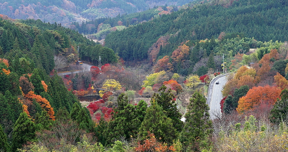 Cars passing through autumnal roads, Gifu, Honshu, Japan, Asia
