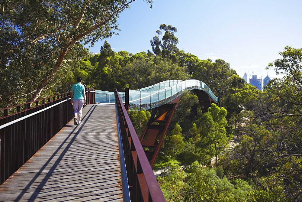 Person walking on Lotterywest Federation Walkway in King's Park, Perth, Western Australia, Australia, Pacific