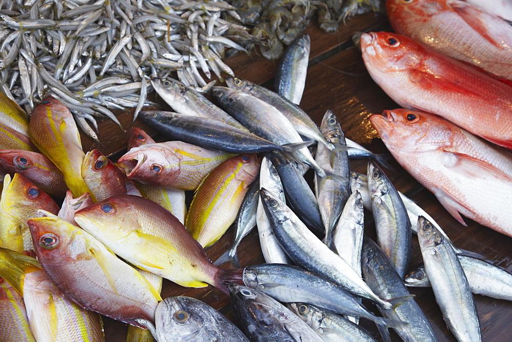 Fish at market, Weligama, Southern Province, Sri Lanka, Asia