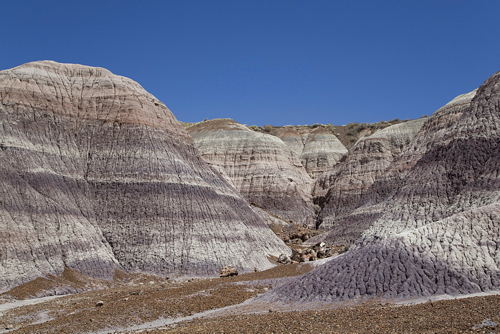 Petrified Forest National Park, Blue Mesa, Blue Mesa Trail, sedimentary layers of bluish bentonite clay
