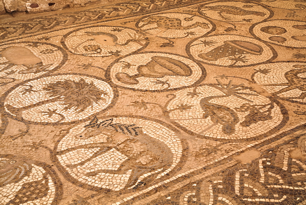 Floor mosaics, Petra Church (Byzantine Church), built between the 5th and 7th centuies AD, Petra, UNESCO World Heritage Site, Jordan, Middle East