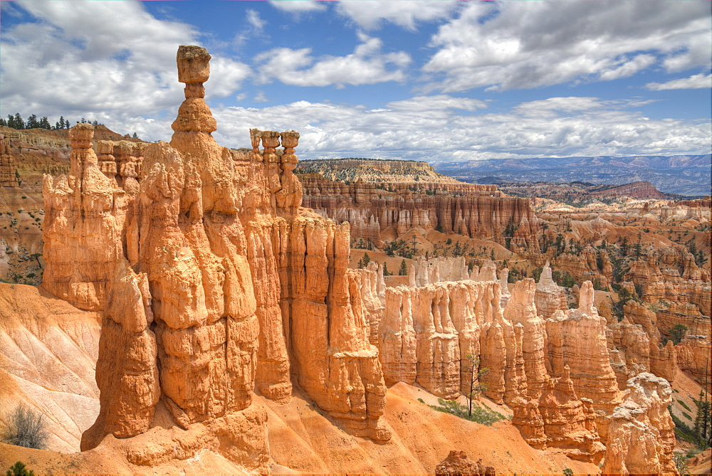 Hoodoos, on the Queens Garden Trail, Bryce Canyon National Park, Utah, United States of America, North America - 801-1824