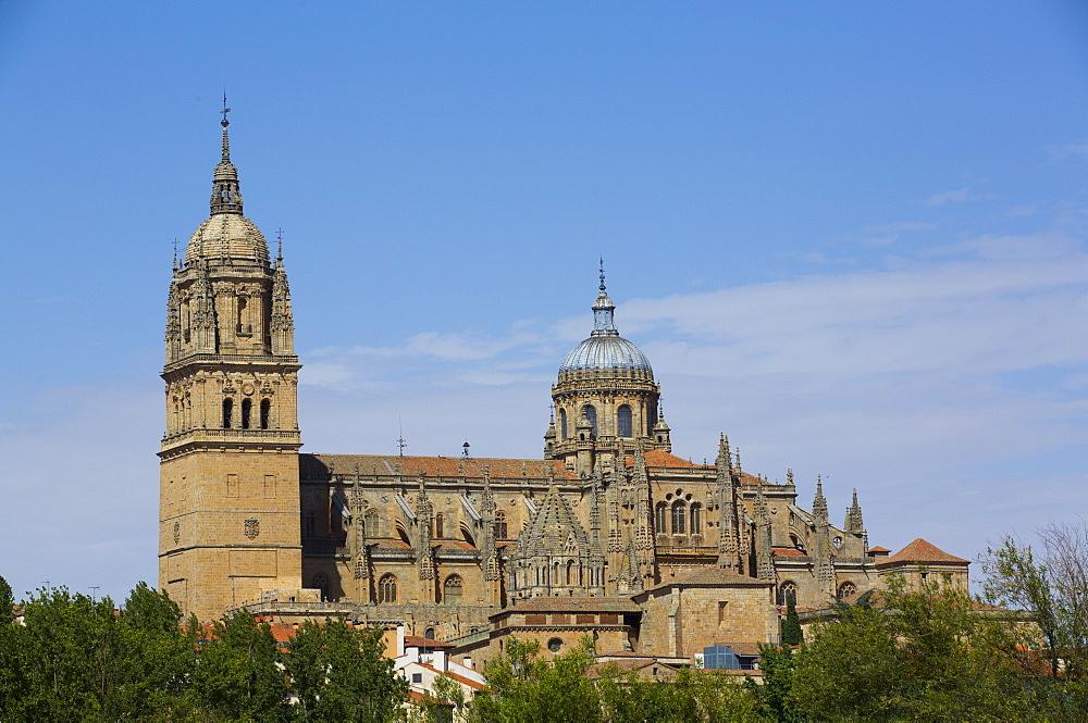 Cathedral of Salamanca, Salamanca, UNESCO World Heritage Site, Castile y Leon, Spain, Europe