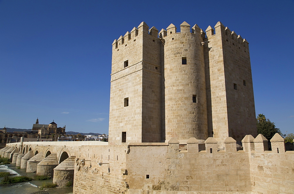 The Living Museum of Al-Andalus in the foreground and The Great Mosque (Mesquita) and Cathedral of Cordoba in distance, Cordoba, Andalucia, Spain, Europe