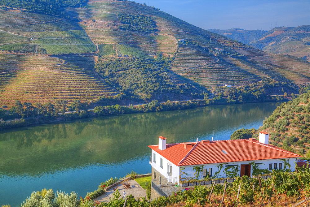 Quinta da Marka overlooking the Douro River, Alto Douro Wine Valley, UNESCO World Heritage Site, Portugal, Europe
