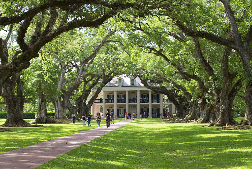 The 300 Year Old Oak Trees, Oak Alley Plantation, built 1830s, near St. James, Louisiana, United States of America, North America - 801-2027