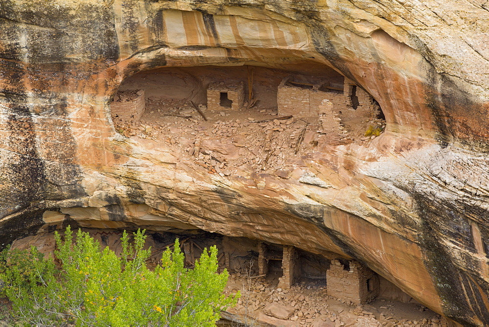 Over Under Anasazi Ruins, Ancestral Pueblo, Bear's Ears National Monument, Utah, United States of America, North America