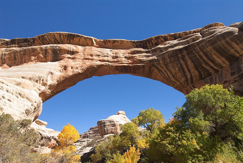 Natural Bridges National Monument, Sipapu Bridge, Utah, United States of America, North America