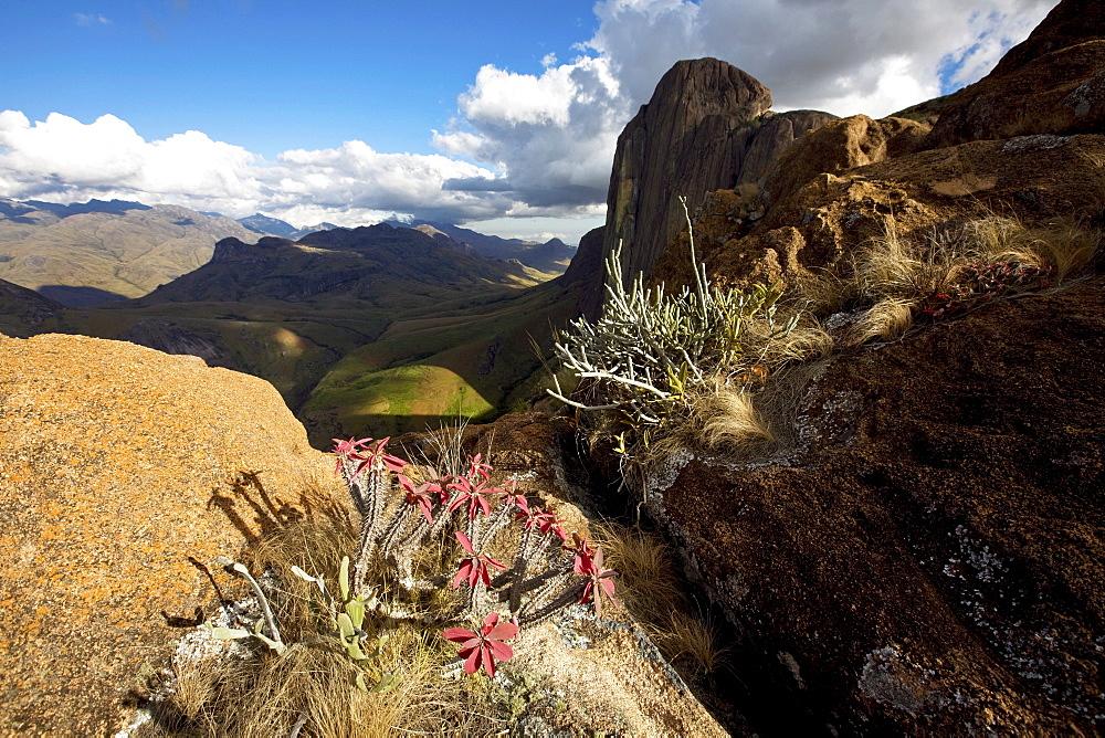 The wild and arid granite terrain of the Tsaranoro Massif, Andringitra National Park, Madagascar, Africa
