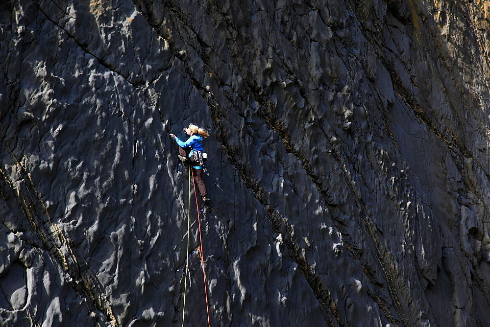 A climber scales cliffs at Lower Sharpnose Point, north Cornwall, England, United Kingdom, Europe