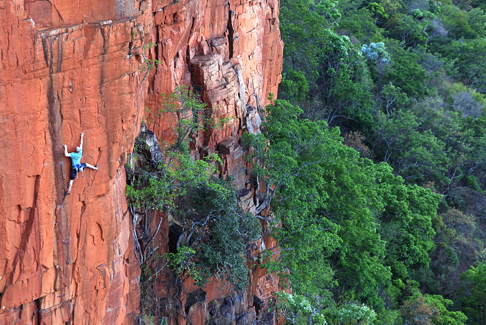 A climber on the sandstone cliffs of Waterval Boven, South Africa, Africa - 802-280