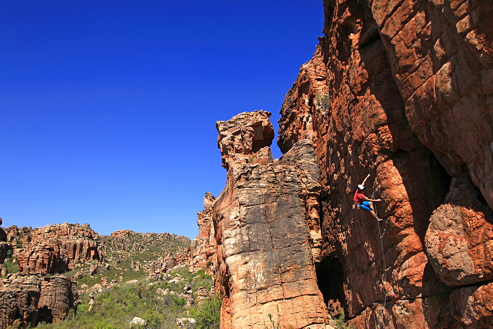 A climber on the sandstone cliffs of the Cederberg Mountains, Western Cape, South Africa, Africa - 802-282