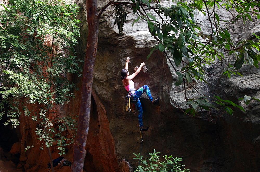 A climber scaling limestone cliffs in the jungle at Serra do Cipo, Minas Gerais, Brazil, South America - 802-287