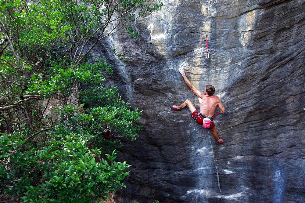 A climber scaling limestone cliffs in the jungle at Serra do Cipo, Minas Gerais, Brazil, South America - 802-288