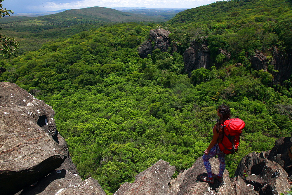 Looking across the jungle at Serra do Cipo, Minas Gerais, Brazil, South America