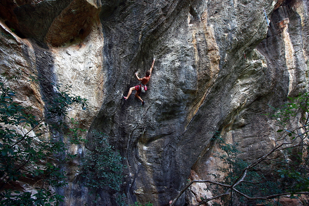 A climber scaling limestone cliffs in the jungle at Serra do Cipo, Minas Gerais, Brazil, South America - 802-291