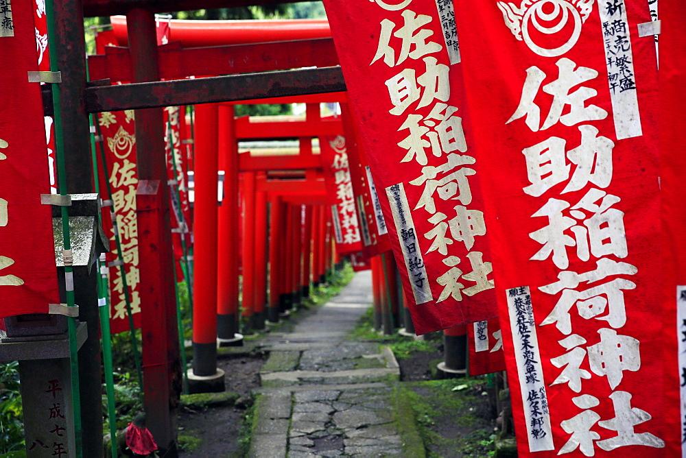 Alley in the Kamakura hills, Honshu, Japan, Asia - 802-313