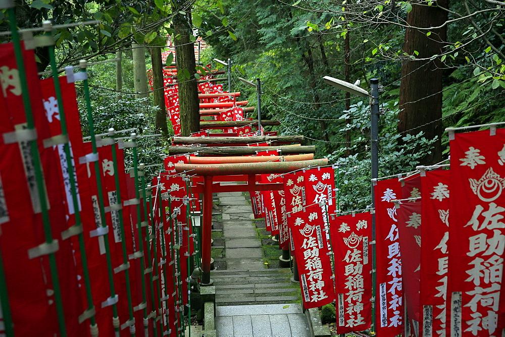 Alley in the Kamakura hills, Honshu, Japan, Asia - 802-325