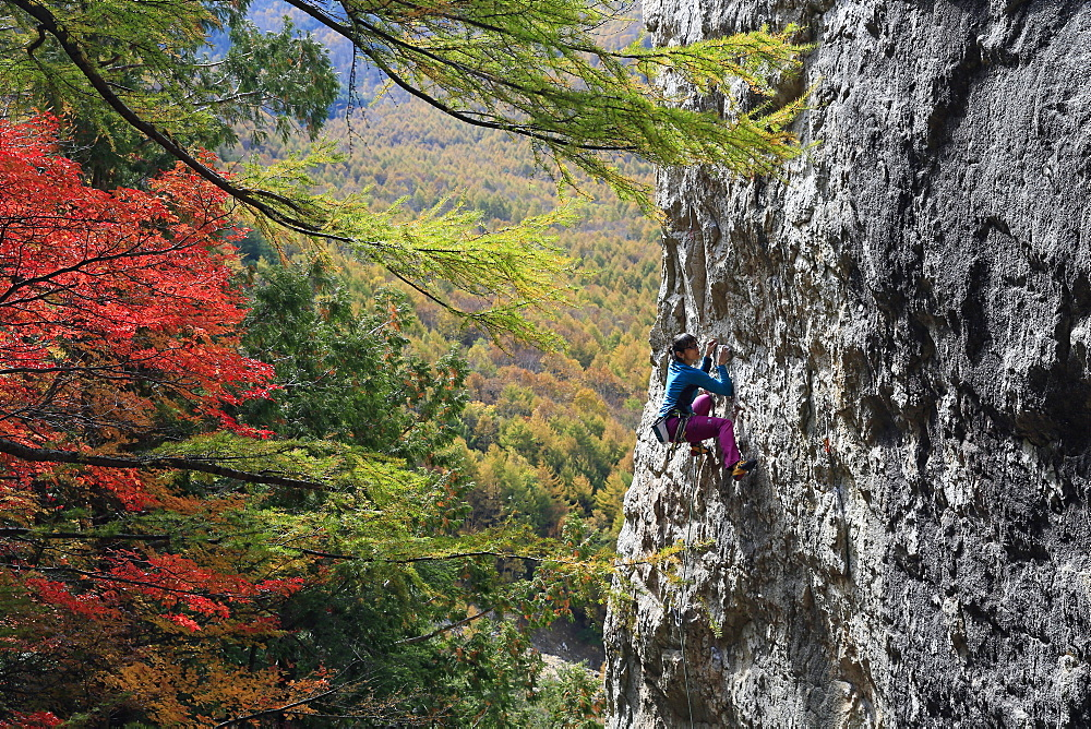 A woman rock climbing at Ogawayama, a mountain on the border of Nagano and Yamanashi prefectures, Honshu, Japan, Asia