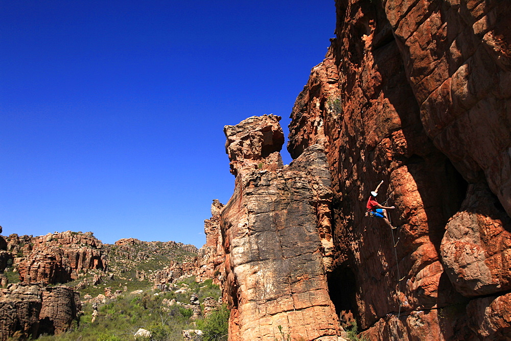 Climber on cliffs in the Cederberg mountains, Western Cape, South Africa, Africa