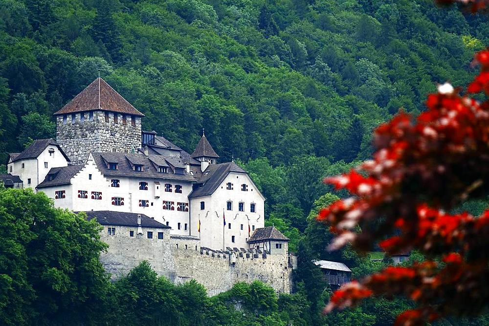 Castle Vaduz, Liechtenstein, Europe - 802-493