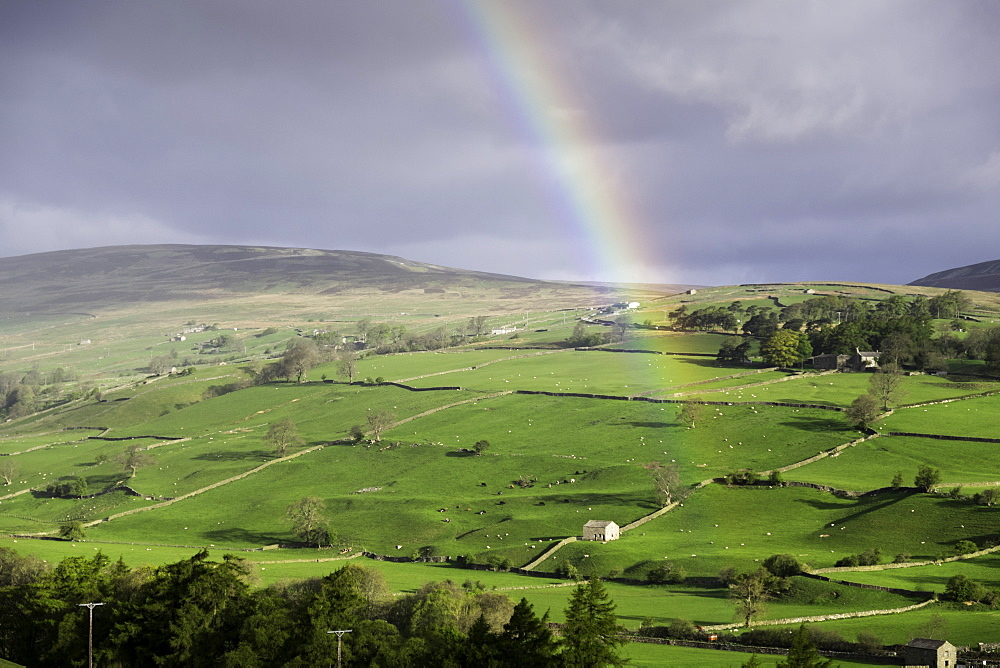 A rainbow over the countryside of Swaledale, Yorkshire Dales, Yorkshire, United Kingdom, Europe