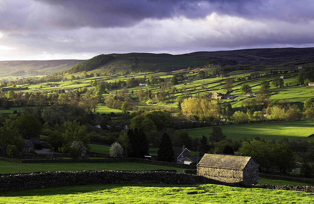 View down the valley of Swaledale taken from just outside Reeth, Yorkshire Dales, Yorkshire, England, United Kingdom, Europe - 803-234