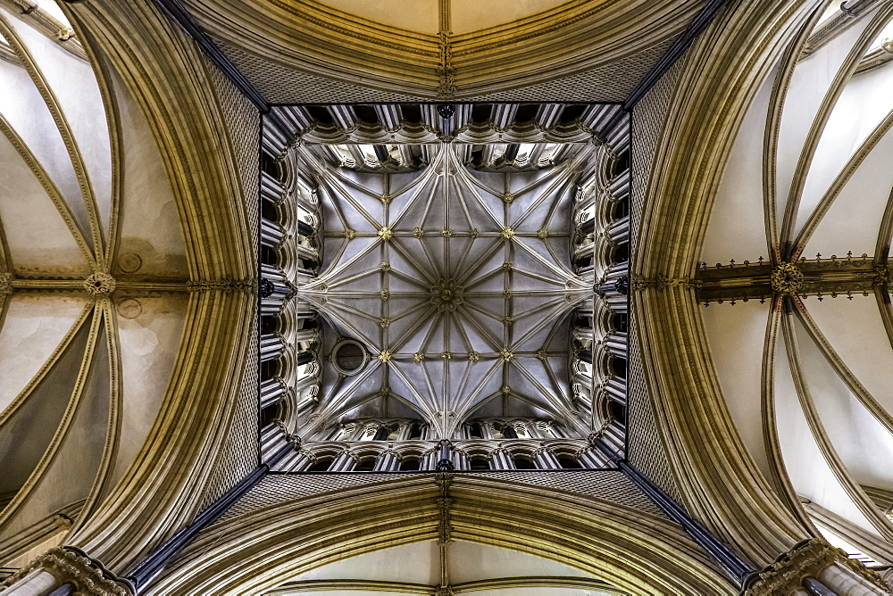 The ceiling of Lincoln Cathedral, Lincoln, Lincolnshire, England, United Kingdom, Europe - 803-275