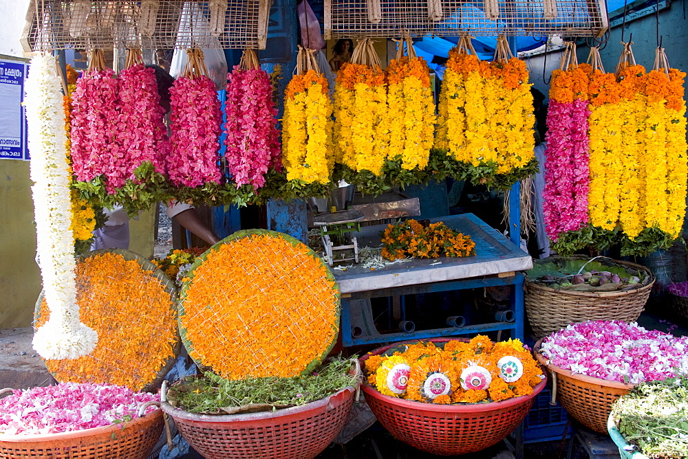 Flower shop, Chalai, Trivandrum, Kerala, India, Asia - 804-270