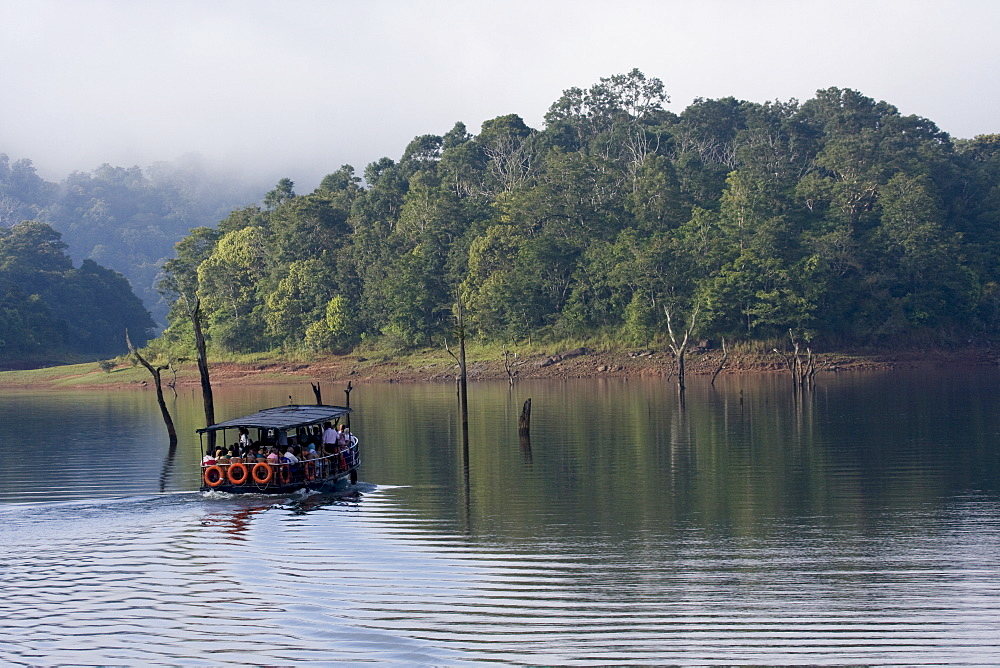 Boating, Periyar Tiger Reserve, Thekkady, Kerala, India, Asia - 804-341