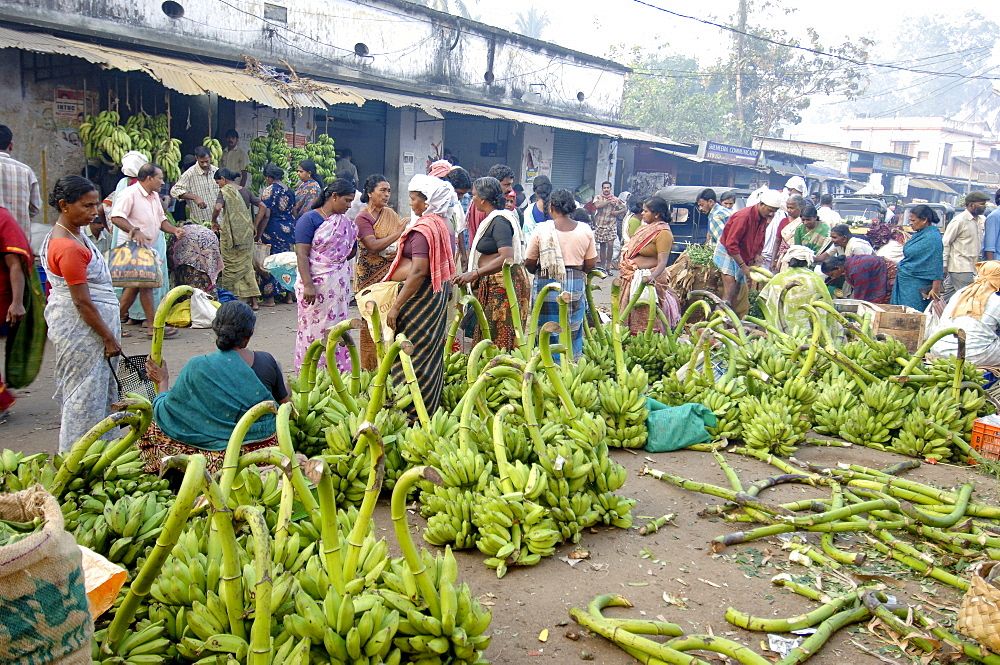 Plantains for sale at vegetable market, Chalai, Trivandrum, Kerala, India, Asia - 804-345