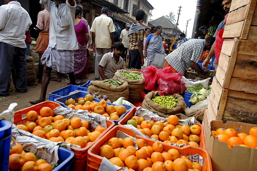 Vegetable market, Chalai, Trivandrum, Kerala, India, Asia - 804-351