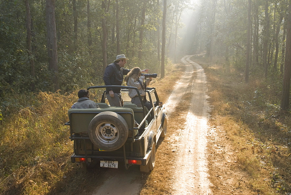 Tourists on morning safari, Kanha, Madhya Pradesh, India, Asia - 804-358