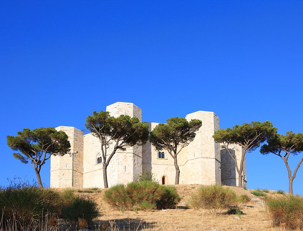 Castel Del Monte (Federico II Castle), UNESCO World Heritage Site, Puglia, Italy, Europe - 806-267