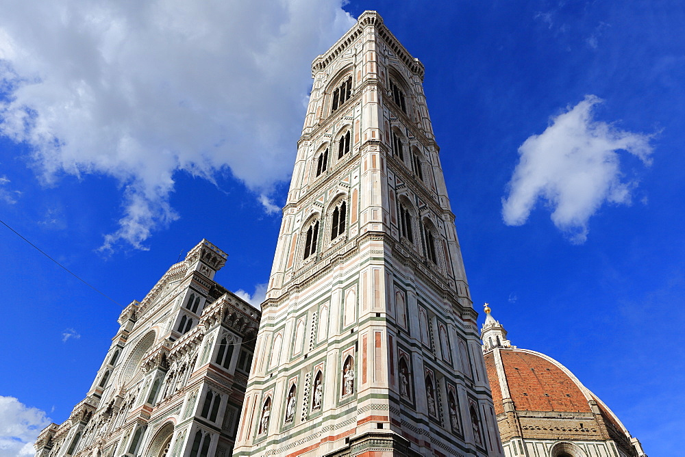Giotto bell tower and Santa Maria del Fiore Cathedral (Duomo), Florence, UNESCO World Heritage Site, Tuscany, Italy, Europe - 806-328