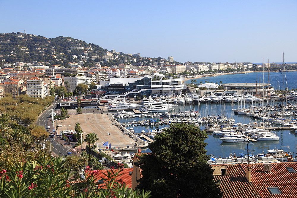 Harbor, Cannes, Alpes Maritimes, Cote d'Azur, French Riviera, Provence, France, Europe
