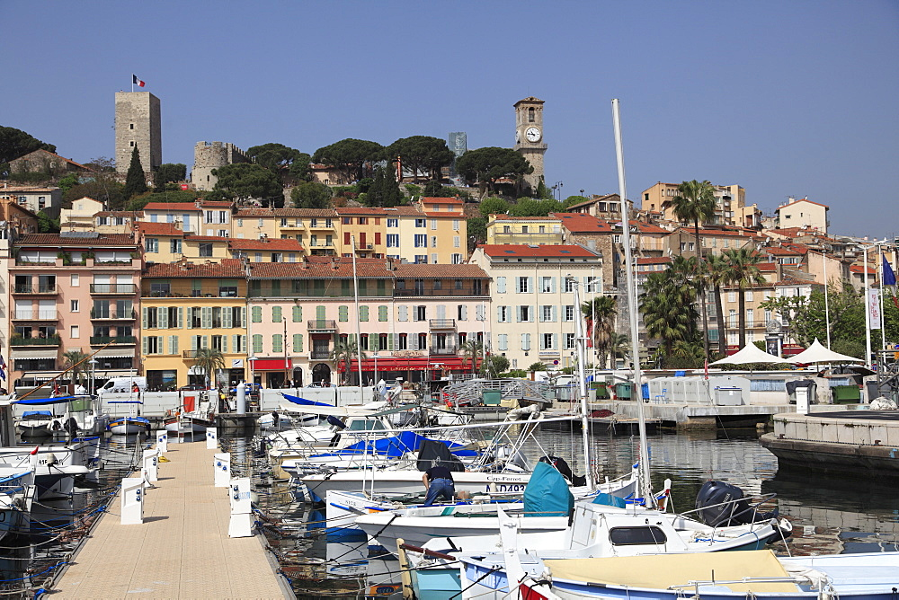 Harbor, Port, Le Suquet, Old Town, Cannes, Alpes Maritimes, Cote d'Azur, Provence, French Riviera, France, Europe