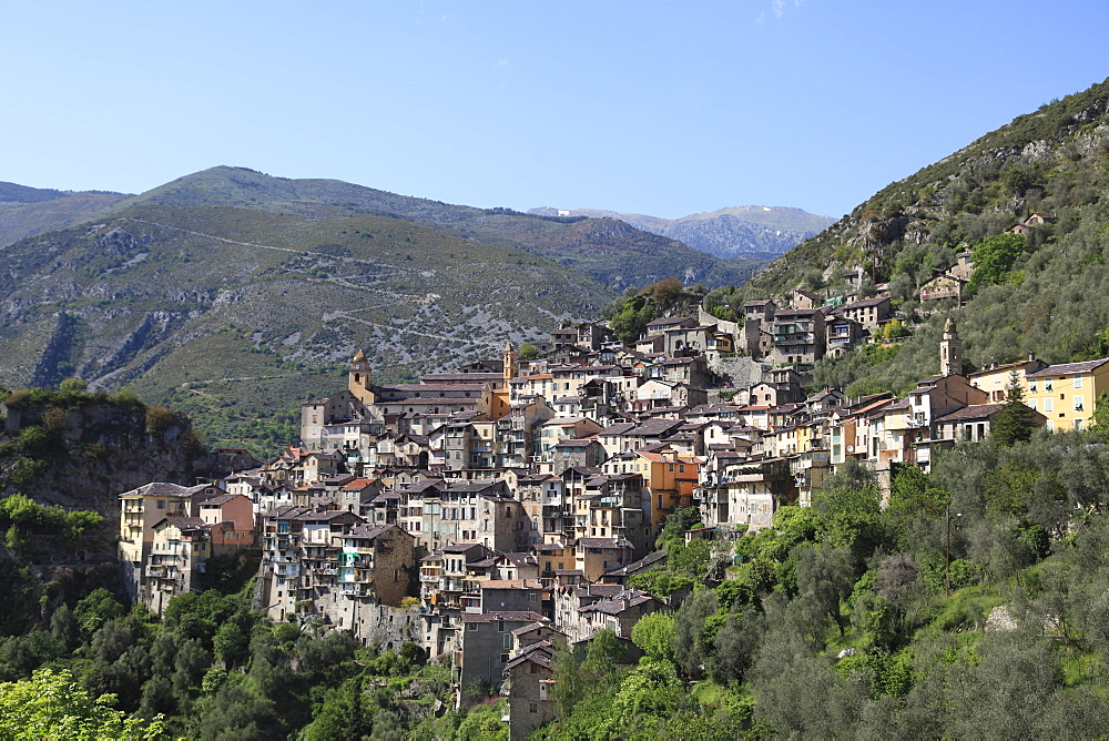 Saorge, Perched Medieval Village, Roya Valley, Alpes-Maritimes, Cote d'Azur, French Riviera, Provence, France, Europe