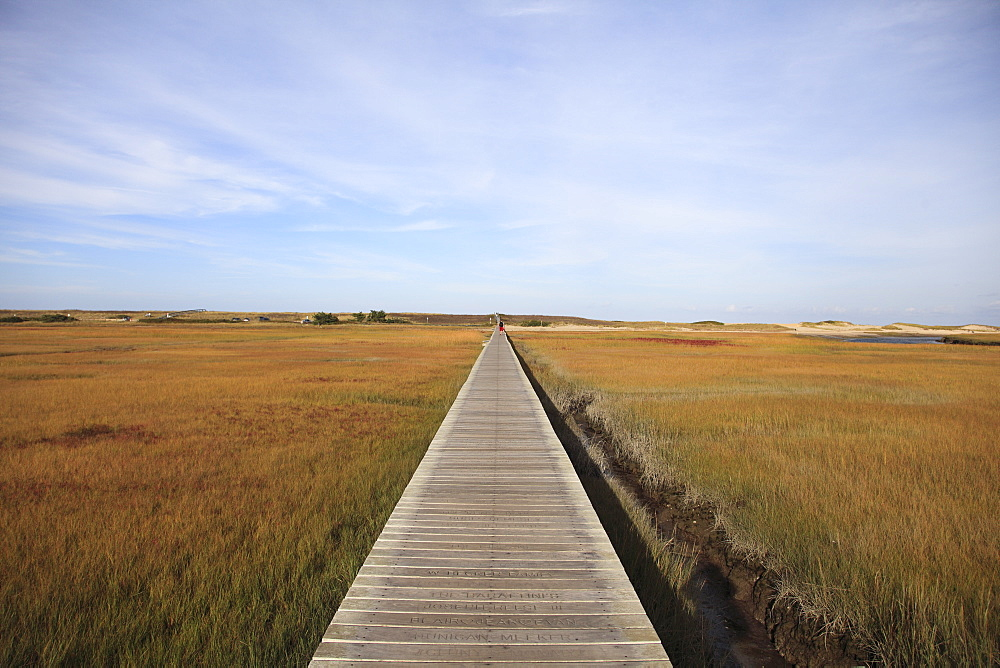 Sandwich Boardwalk, Salt Marsh, Sandwich, Cape Cod, Massachusetts, New England, United States of America, North America