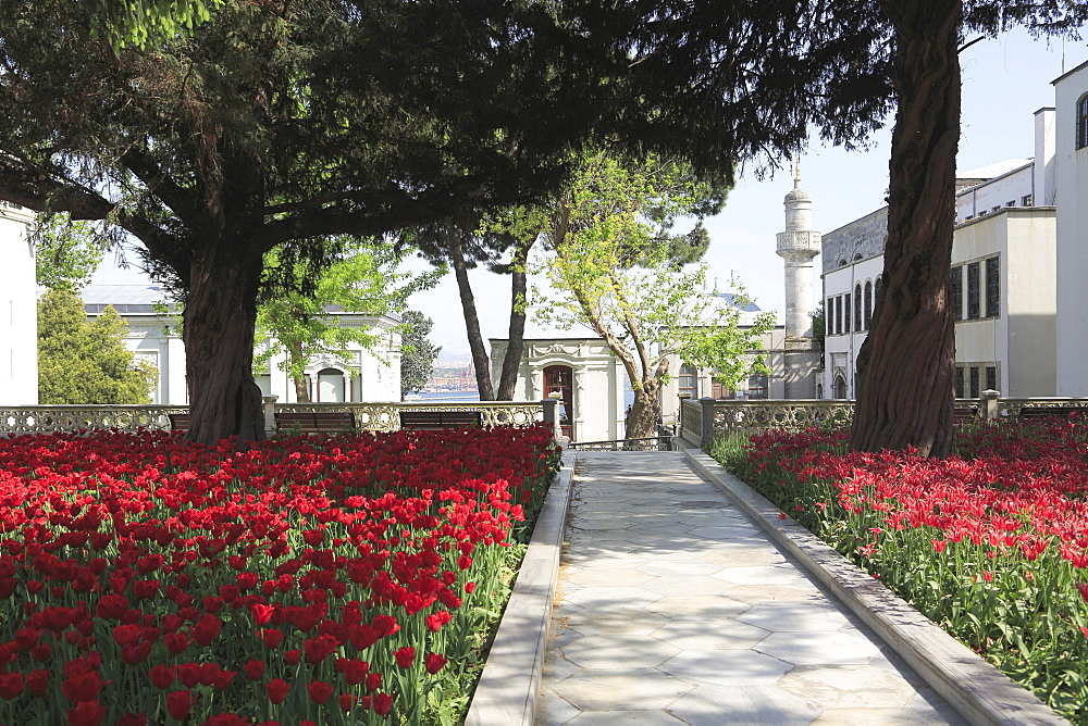 Tulip Garden, Fourth Courtyard, Topkapi Palace, UNESCO World Heritage Site, Istanbul, Turkey, Europe