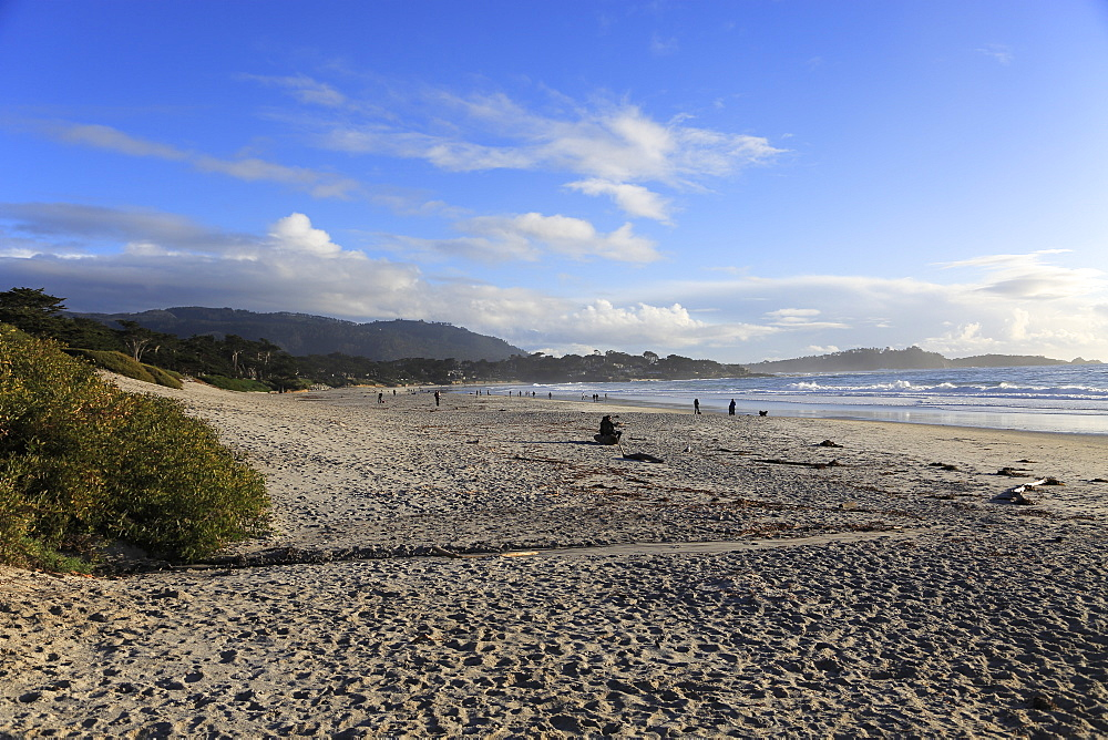 Beach, Carmel by the Sea, Monterey Peninsula, Pacific Ocean, California, USA