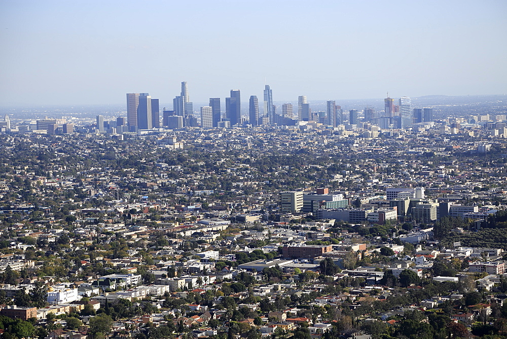 View of Downtown Skyline from Hollywood Hills, Los Angeles, California, USA
