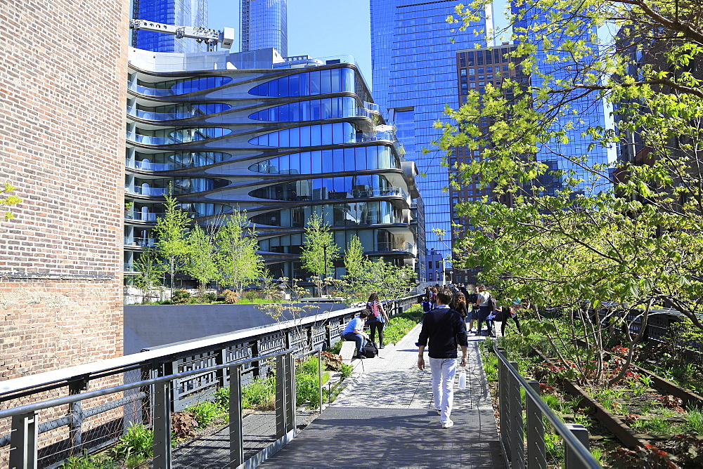 High Line Park, Manhattan, New York City, New York, United States of America, North America
